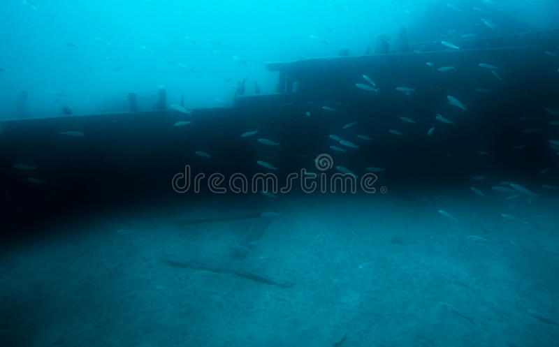 under vatten royaltyfri fotografi