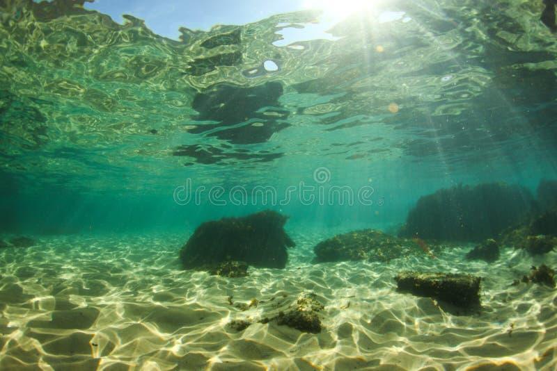under vattenvärlden royaltyfria foton
