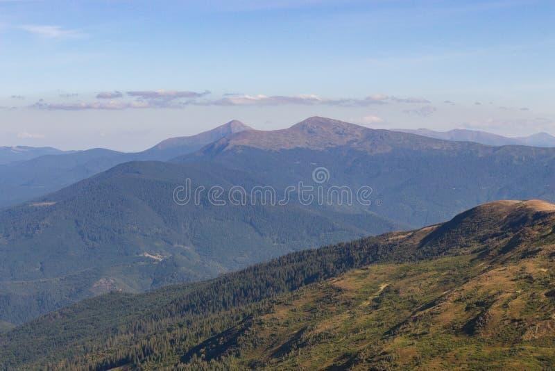 Underbar panoramautsikt av Carpathians berg, Ukraina Montering Hoverla, Carpathians Vintergrönt kullelandskap med klar himmel arkivbilder