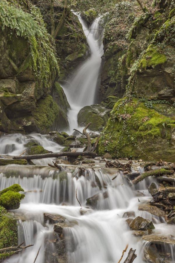 underbar sikt av den Leshnishki vattenfallet i den djupa skogen, Belasitsa berg royaltyfri bild