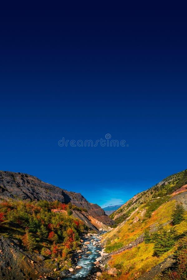 Underbar sikt på den Torres del Paine nationalparken i den guld- hösten, Patagonia, Chile royaltyfria bilder
