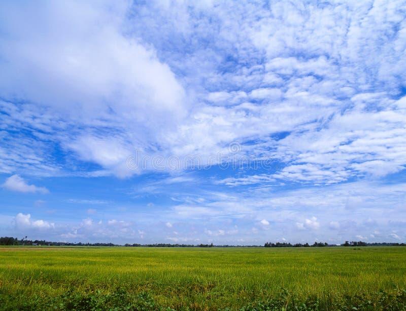 underbar sky fotografering för bildbyråer