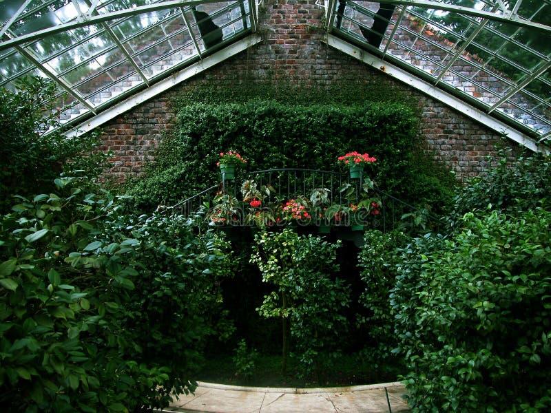Download Underbar vägg arkivfoto. Bild av plats, blomma, inomhus, dekorativt - 6472
