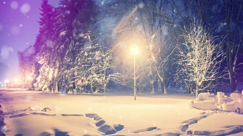Underbar vinterliggande Övervintra landskap, snö, täckte som frostiga träd i en nattstad parkerar royaltyfria bilder