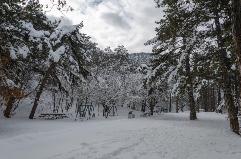 Underbar vinterliggande promenad som täckas med snö royaltyfria bilder