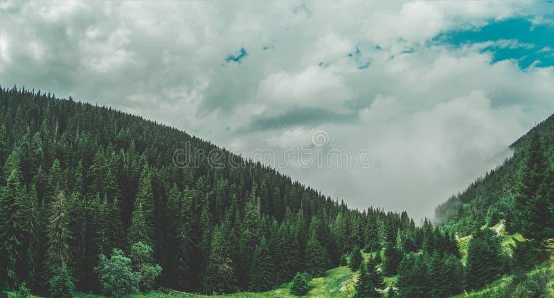 Underbara sikter av de Pirin bergen royaltyfri bild