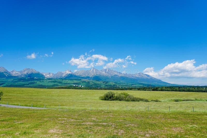 Underbara Tatra berg i Slovakien med bakgrund för blå himmel och gräsfältet royaltyfri foto