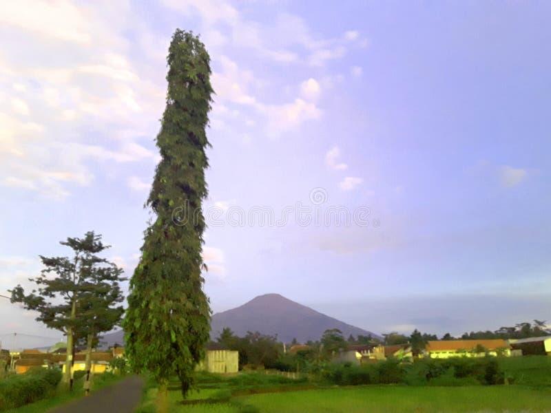 Underbart bergfoto, härligt berg royaltyfria foton