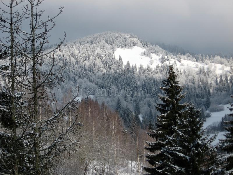 Underbart berglandskap #5 royaltyfri foto
