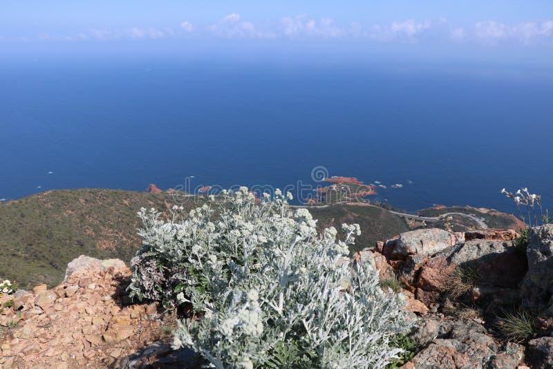 Underbart landskap av det Esterel berget i franska Riviera, Var, Frankrike royaltyfria bilder