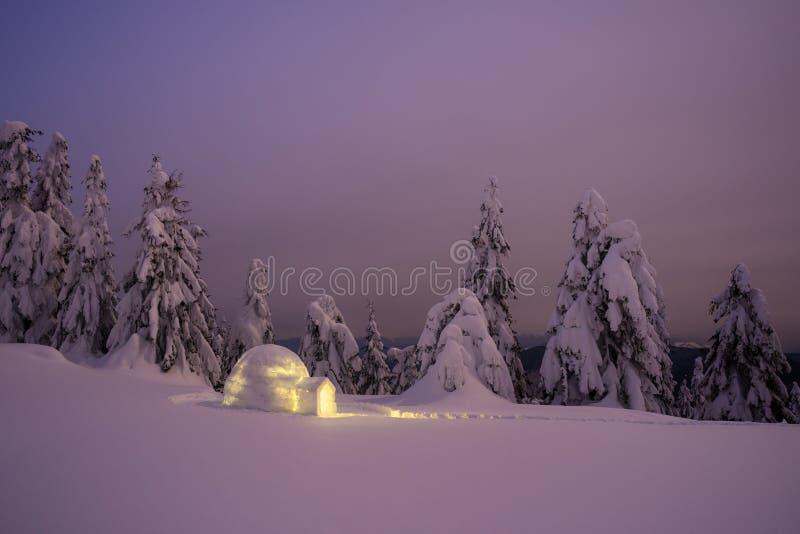 Underbart vinterlandskap med snöigloo på natten royaltyfri fotografi