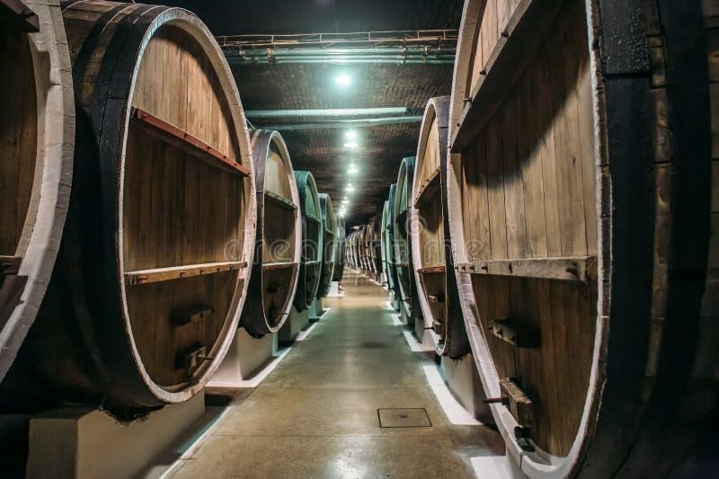 Underjordisk vinkällare med rader av gamla stora trätrummor i vinodlingen, industriell underjordisk korridor i alkoholfabrik fotografering för bildbyråer