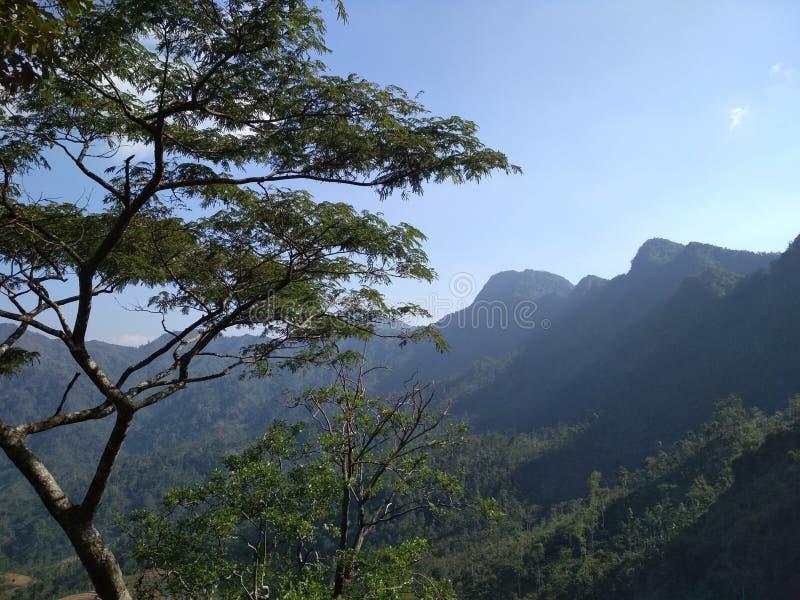Undersök bergen i Indonesien arkivfoto