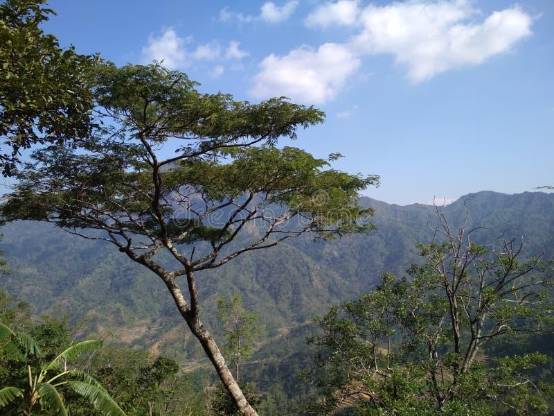 Undersök bergen i Indonesien arkivbilder