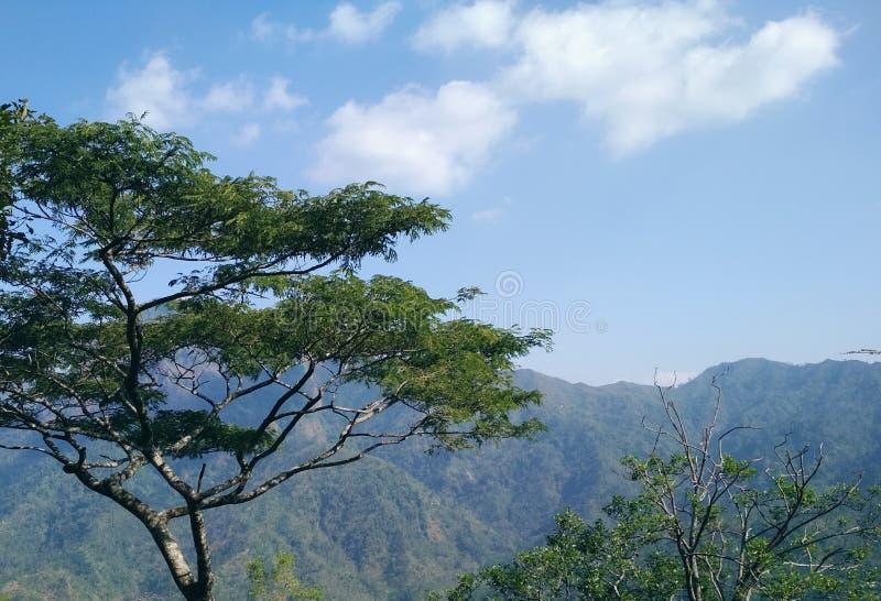 Undersök bergen i Indonesien royaltyfri bild