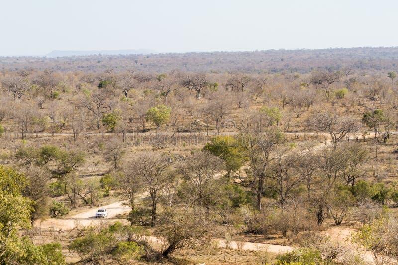 Undersök Kruger royaltyfria bilder