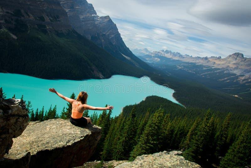 Undersök Peyto sjön, Rocky Mountains, den Banff nationalparken, Kanada royaltyfria bilder