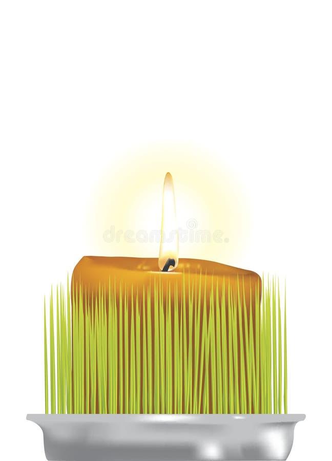 undersöka flamm vektor illustrationer