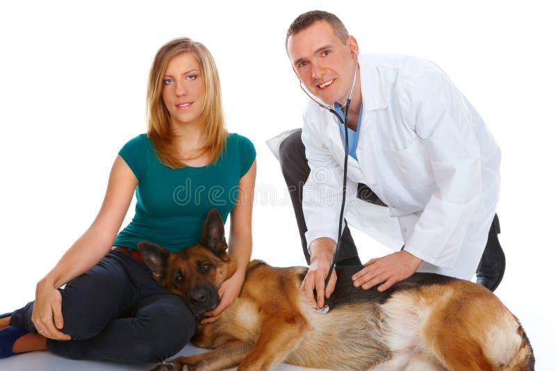 undersökande flicka för hund henne vetbarn royaltyfri fotografi