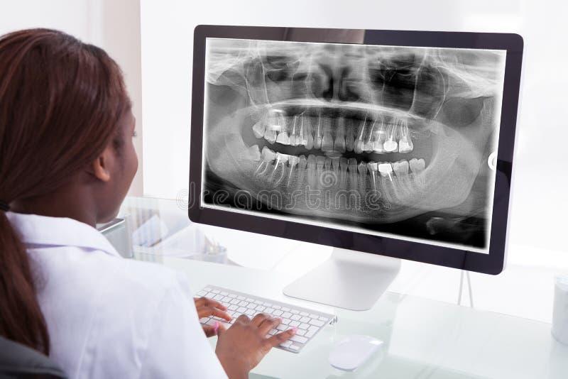 Undersökande käkeröntgenstråle för kvinnlig tandläkare på datoren i klinik royaltyfri bild