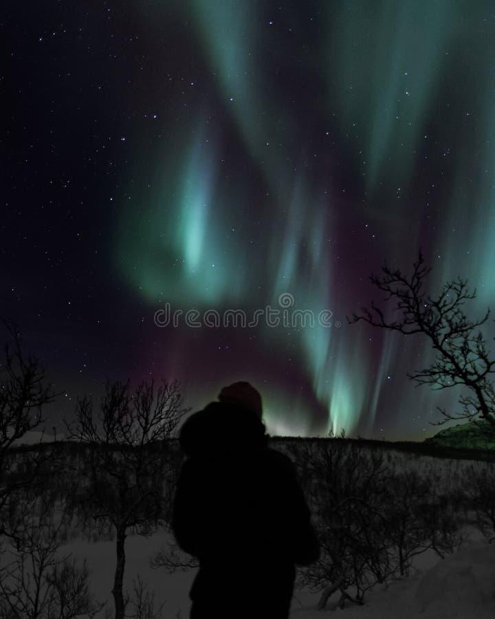 Undersökande nordliga ljus i mörkret royaltyfria bilder