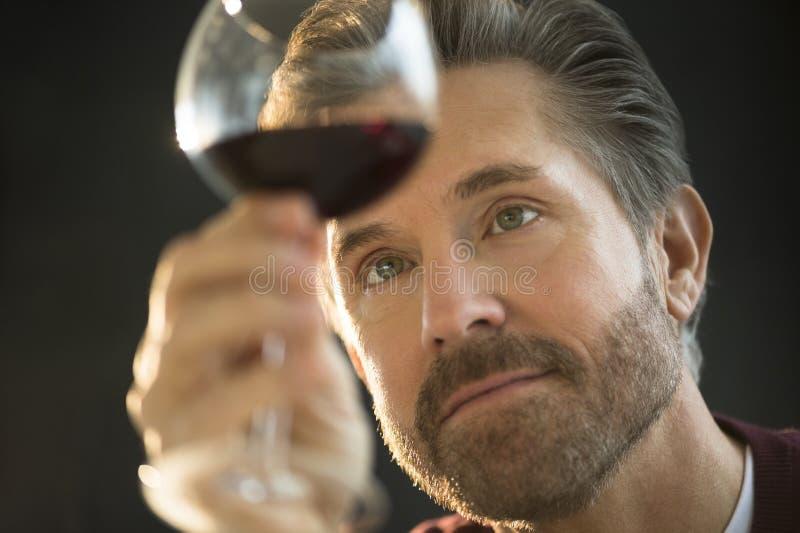 Undersökande rött vin för stilig man arkivbild