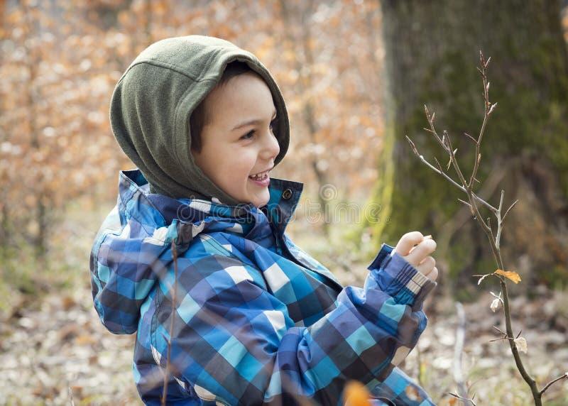 Undersökande vårnatur för barn i skog arkivfoton