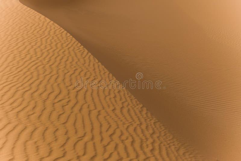 Undersökning av den sahara öknen i Marocko arkivfoto