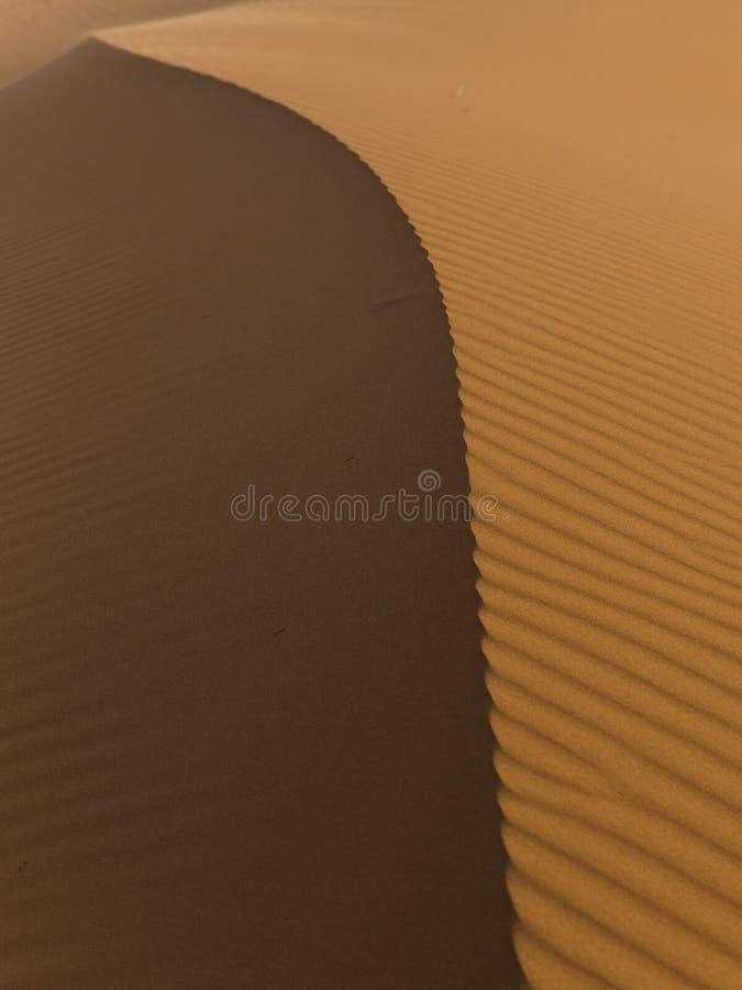 Undersökning av den sahara öknen i Marocko royaltyfri bild