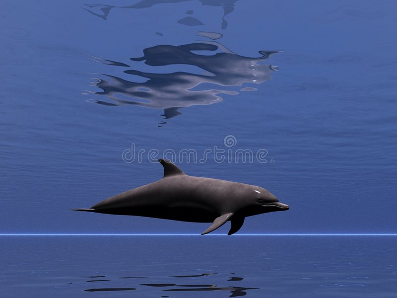 undersea delfin 2 stock illustrationer