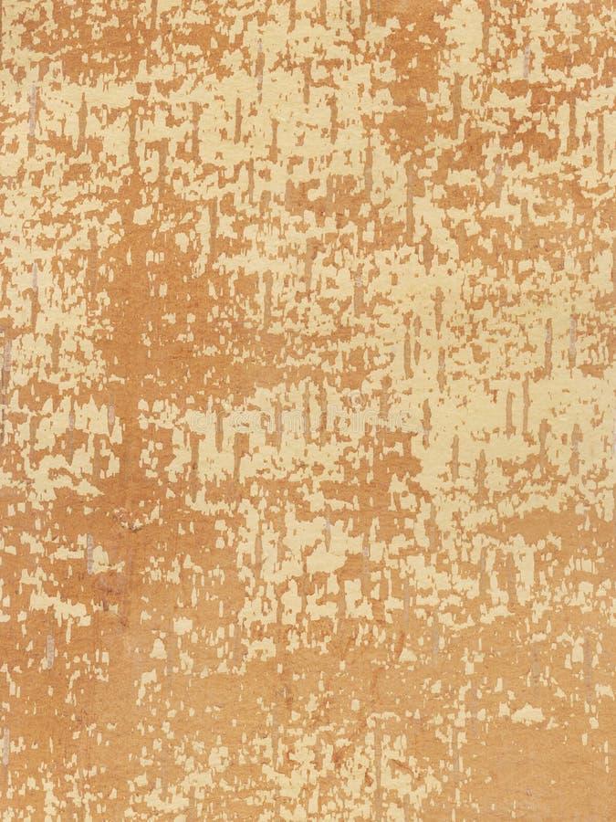 underside σημύδων φλοιών διανυσματική απεικόνιση