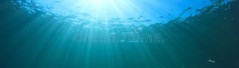 undervattens- bakgrund fotografering för bildbyråer