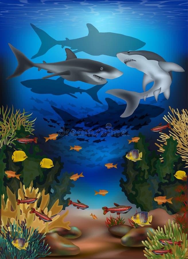 Undervattens- baner med den tropiska fisken och hajar stock illustrationer