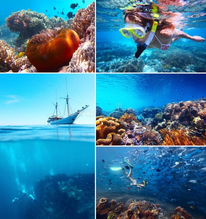 Undervattens- Collage royaltyfri fotografi