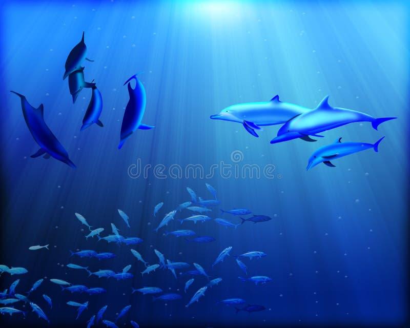 Undervattens- delfin royaltyfri illustrationer