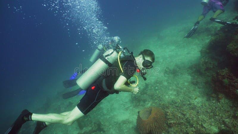 undervattens- dykarescuba royaltyfria bilder