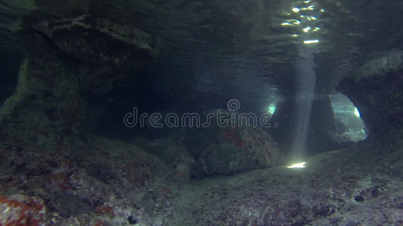 Undervattens- grotta stock video