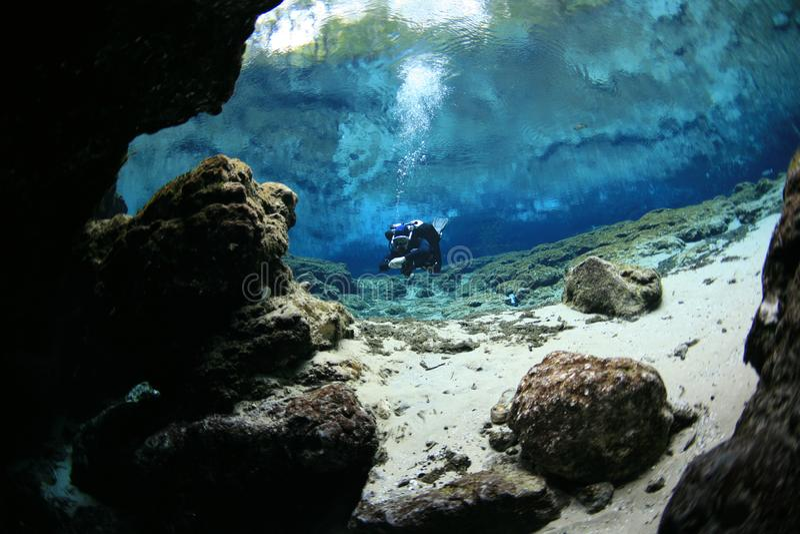 Undervattens- grottor för dykare som dyker Florida Amerika arkivbilder