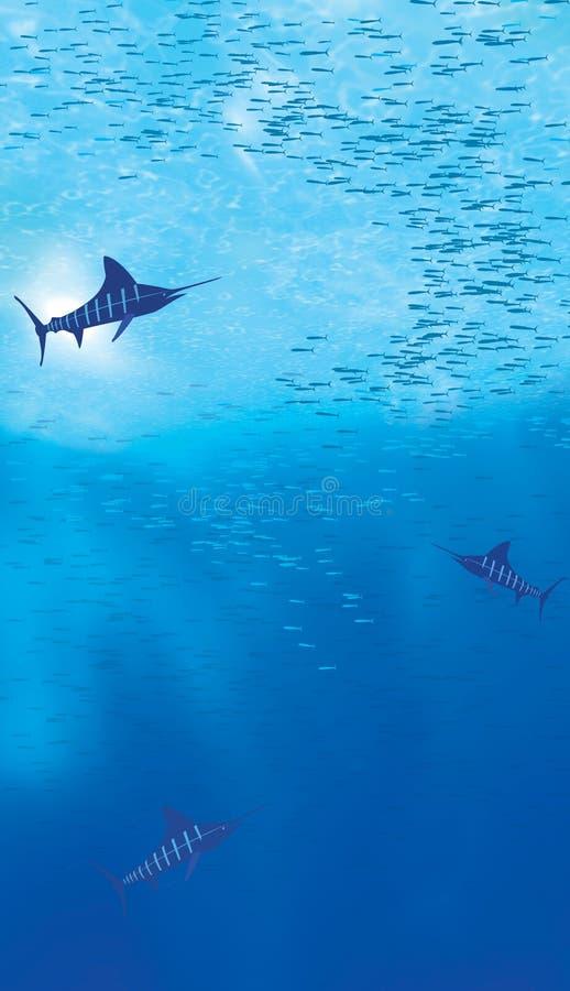 undervattens- havplats royaltyfria foton