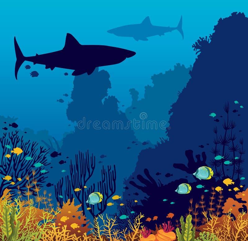 Undervattens- korallrev, fiskar, haj och hav vektor illustrationer