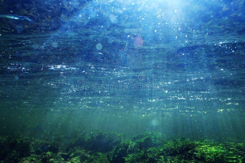 Undervattens- landskap i klart flodvatten royaltyfri fotografi