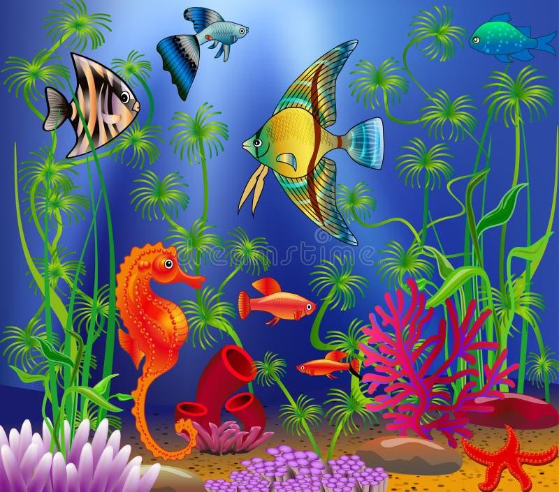 Undervattens- landskap med olika vattenväxter vektor illustrationer