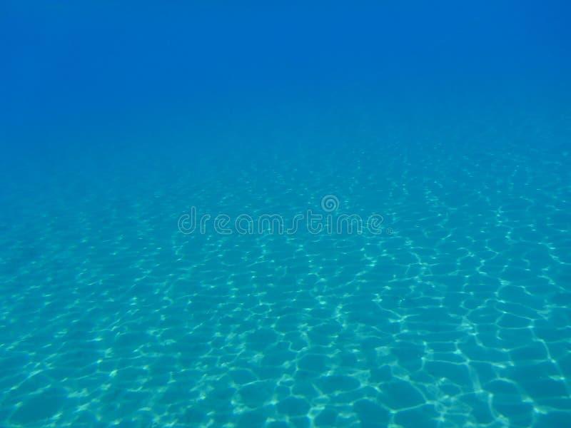 Undervattens- liv i den Kythnos för Kolona dubblettfjärd ön Cyclades Grekland, Aegean hav arkivbilder