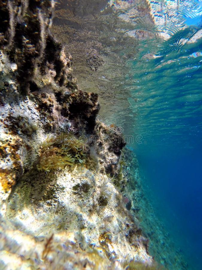 Undervattens- på den sardinian kusten fotografering för bildbyråer