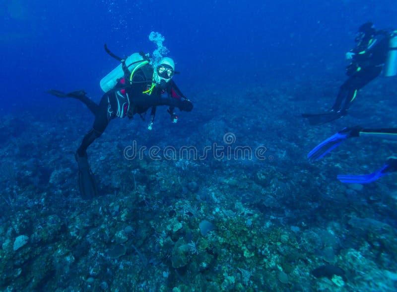 Undervattens- plats med dykaren i det karibiska havet arkivbilder