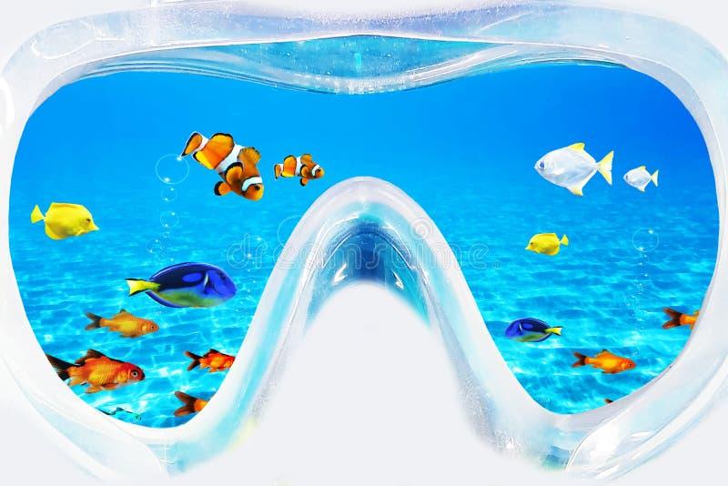 Undervattens- sikt till och med att snorkla glasögon arkivfoto
