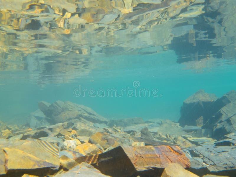 Undervattens- som skjutas i grunt vatten över stenig underkant arkivbilder