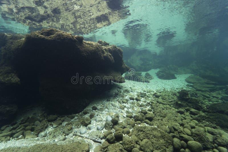 Undervattenslandskap rent vatten fotografering för bildbyråer
