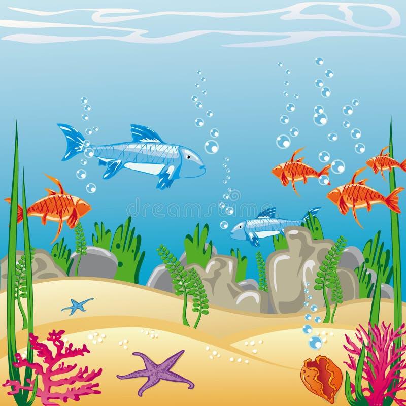 Download Underwater stock vector. Illustration of illustration - 20656975