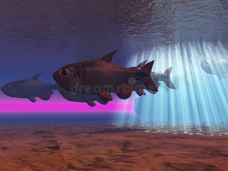 Download Underwater stock illustration. Image of diving, exotic - 2972466